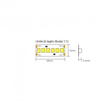 STRISCIA LED 96W 8000LM 24V IP20 PCB 10MM BOBINA DA 1200 SMD