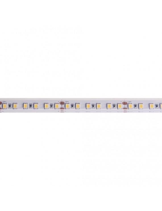 Led Strip H.C. Series 90W 9000LM 24V IP67 PCB 10mm 600 SMD Reel