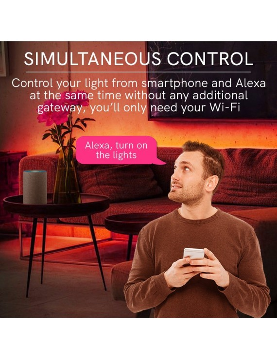 Ricevitore WiFi Universale per Strisce Led 12V 24V 8A