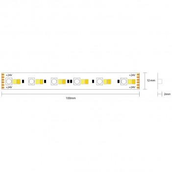 Striscia Led 24V 144W RGB+CCT Luce Colorata e Kelvin Variabili