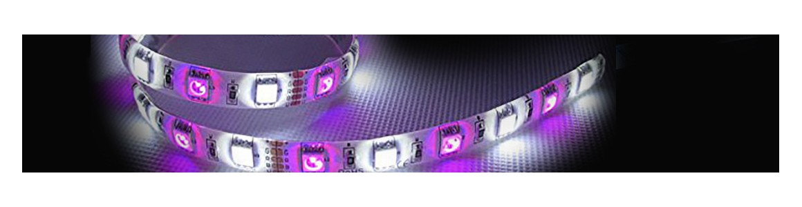 RGB+W - Lighting at fair prices